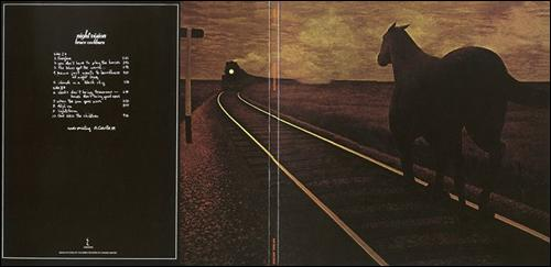 horse_and_train_night_vision.jpg