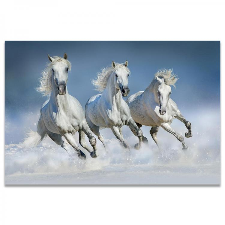 White-Horses-Painting-Snow-Running-Horse-Poster-Sunrise-Wall-Art-Canvas-Print-Farm-Decoracion-Wall-Pictures.jpg
